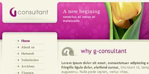 g_consultant.jpg